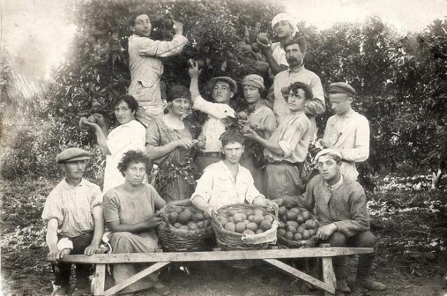 Agriculture_in_Israel-Ein_Ganim-KATIF-1923